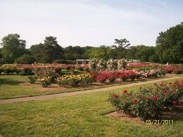 Botanical Gardens Discount Norfolk Botanical Garden All You Need To Before You Go