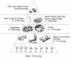 food pyramid coloring 15 606x487 my ideal frozen meal for one