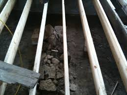 tucker station barefoot in the city bracing subfloor mold and