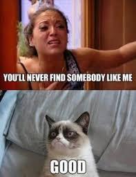 Explicit Memes - grumpy cat explicit memes google search ffunniesss pinterest