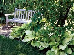 Shady Garden Ideas Shade Gardens Gardens Garden Ideas And Plants