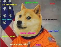 Much Dog Meme - shibe astronaut doge pinterest astronauts doge and memes