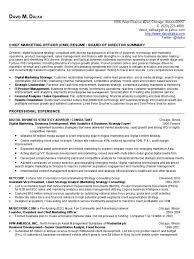 digital marketing resume chief marketing officer resume cmo board of directors resume