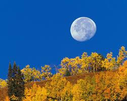 imagenes de otoño para fondo de escritorio fondos de otoño para el escritorio imágenes taringa