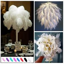 Ostrich Feather Centerpieces Wholesale by Get 20 Ostrich Feather Centerpieces Ideas On Pinterest Without