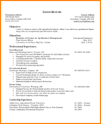 Resume Activities Examples Activities Resume Examples Professional Activities Resume Sample