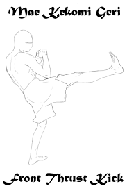 100 Best Karaté Images On Pinterest Martial Arts Shotokan