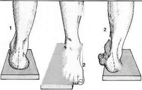 Subtalar Joint Fracture Calcaneus Rheumatoid Arthritis Click To Cure Cancer