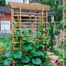 102 best trellises images on pinterest vegetable garden