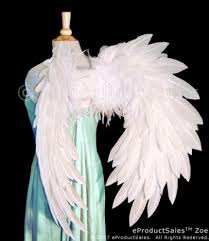 Angel Wings Halloween Costume Martha Kimberlyn