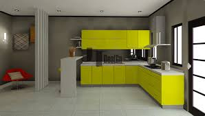 Cheap Kitchen Cabinets Ny Kitchen Kitchen Cabinet Design For Ideal Home Modern Thomasville