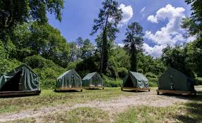 platform tents nantahala outdoor center
