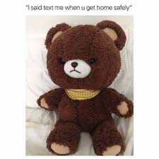 Teddy Bear Meme - i said text me when you get home safely bear goldilocks and the