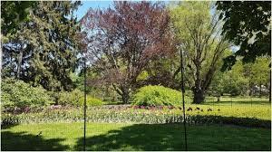 Botanical Gardens Niagara Falls Botanical Garden Niagara Falls Luxury Beautiful Floral Displays