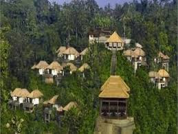 ubud hanging gardens hotel hanging gardens indonesia gotta go to indonesia to see our little