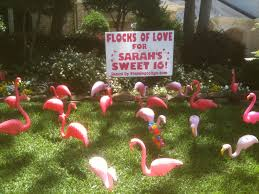 sweet 16 16th birthday flamingos 2 go
