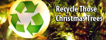 tree recycling city of arvada