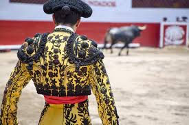 the bullfighting debate for and against