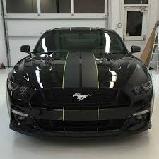 black mustang best 25 black mustang ideas on mustang cars mustangs