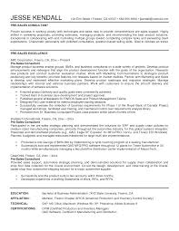 Salesman Resume Sample by Software Sales Resumes Free Resume Example And Writing Download
