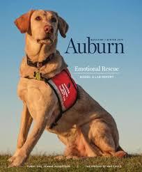auburn alumni search auburn magazine winter 2015 by auburn alumni association issuu