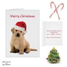 22 best labrador christmas images on pinterest labrador