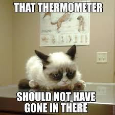 Image 9 Best Grumpy Cat - the grumpy cat meme best cat wallpaper 2018