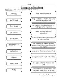 matching ecosystems worksheet 2