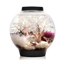 biorb classic 15l 4g all in one acrylic aquarium with led light