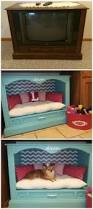 Cute Puppy Beds Treatthepups This Valentine U0027s Day With A D I Y Dog Cabinet Turn A