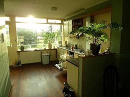 How To Tile A Kitchen Window Sill Best Kitchen Plants Plants For Kitchen To Decorate It Balcony