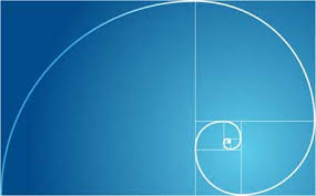 golden ratio dna spiral the golden ratio in nature howstuffworks