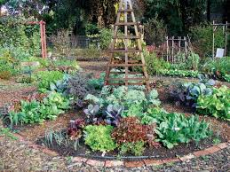Vegetable Garden Landscaping Ideas Edible Landscaping Ideas Design An Vegetable Garden