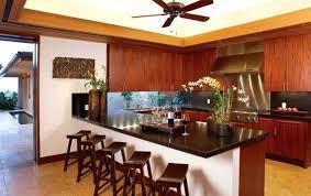 kitchen countertops options ideas extraordinary kitchen counters quartz bathroom counters