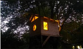 architecture simple small tree house design feature warm