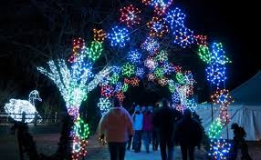 oregon zoo lights 2017 detroit vote and make the detroit zoo s holiday wild lights the