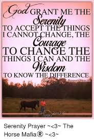 Serenity Prayer Meme - 25 best memes about god grant me the serenity to accept the