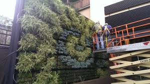 green wall projects people products page 3 imag0419