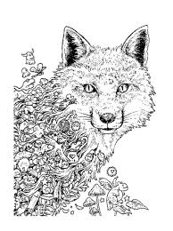 animorphia an extreme coloring and search challenge by kerby rosanes
