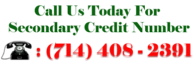 legality of credit profile numbers secondary credit numbers