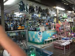 bangkok s aquarium paradise jatujak weekend market sgreefers