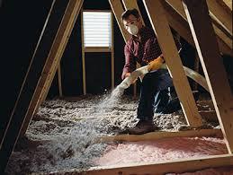 cellulose vs fiberglass everguard insulation