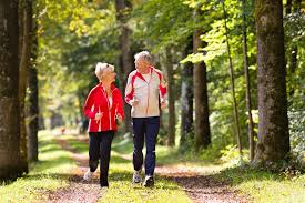 outdoor exercise ideas for seniors