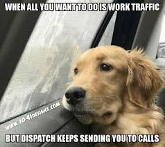 resume templates janitorial supervisor meme dog funny memes clean 1151 best dispatch stuff images on pinterest