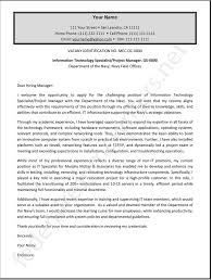 Government Resume Cover Letter Examples Federal Cover Letter Resume Cv Cover Letter