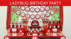Ladybug Home Decor Ladybug Birthday Party Ideas Ladybug B35 Youtube