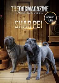 australian shepherd crufts 2015 the dog magazine issue 06 2015 shar pei by thedogmagazine issuu