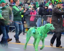 st patrick u0027s day spirit captured in 19 unbelievable images