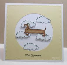 sympathy cards for pets friendship sympathy cards for pets loss with sympathy cards for