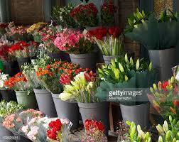 florist shop flower shop stock photos and pictures getty images